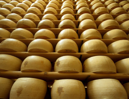cheesetech the new brand dedicated to dairy industry