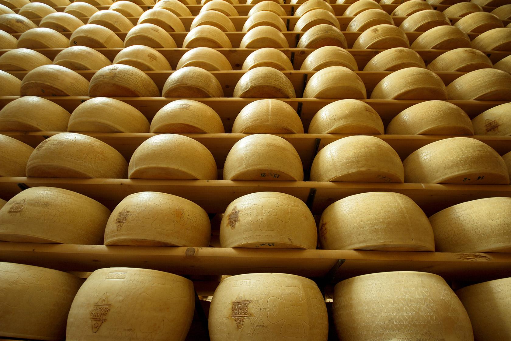 cheesetech è il brand dedicato al modo del lattiero caseario
