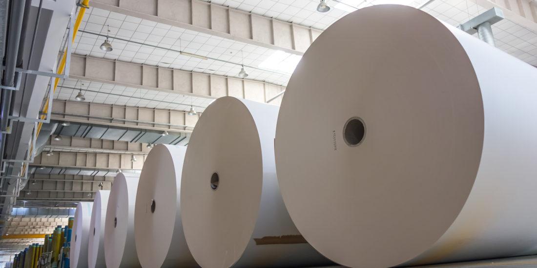 industria della carta