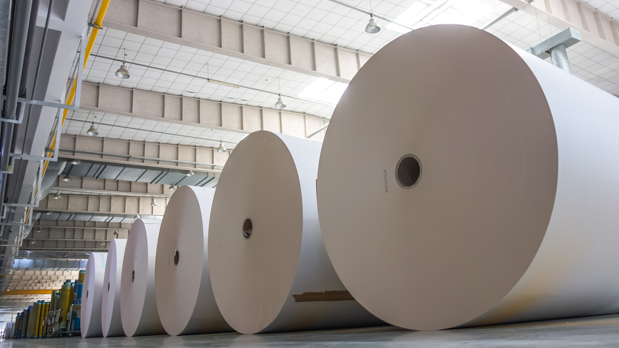 pulp and paper market
