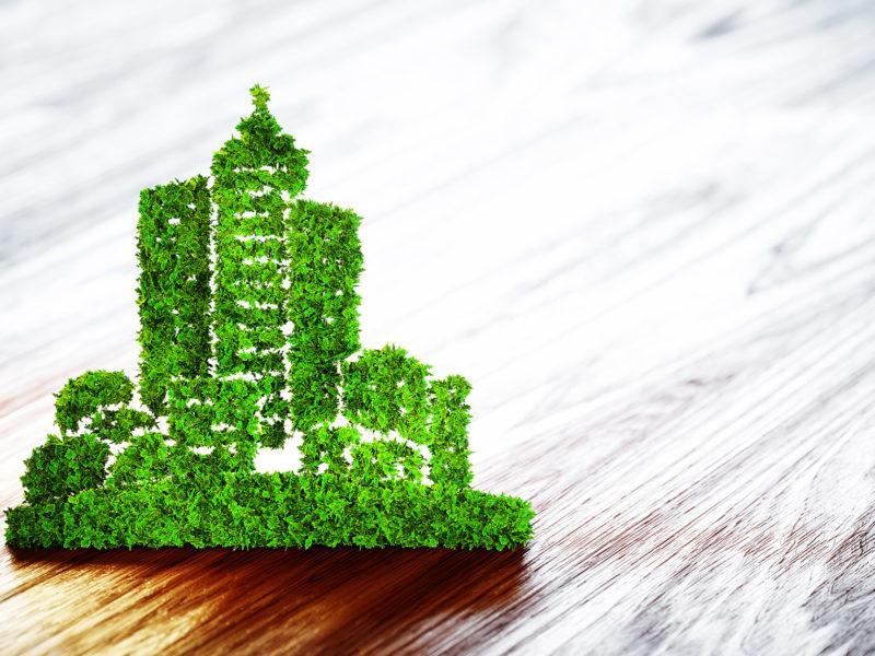 Sostenibilidad y energías renovables